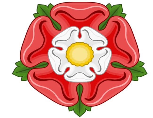 england-national-flower